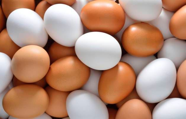 Picture for category Farm Fresh Eggs